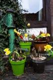 Gamla brunnar och blommor Royaltyfri Foto
