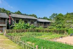 Gamla byggnader för traditionell kines och grönsakträdgårdar på Hakkabyn arkivbild