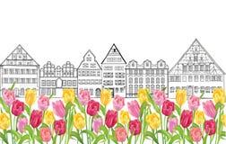 Gamla byggnader och hus i Amsterdam med blommatulpangränden Royaltyfri Foto