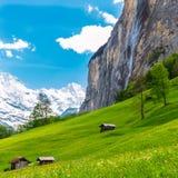 Gamla chalet på grön berglutning schweiziska alps Lauterbrunnen, Arkivbild