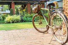 Gamla cyklar i parkera Royaltyfria Foton