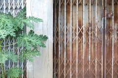 Gamla dörrar är stängda Royaltyfria Bilder