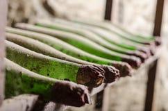 Gamla dammiga vinflaskor i källare arkivbild