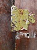 Gamla delar av gamla byggnader: skalade målarfärger och rostiga skruvar på gångjärnet av dörren arkivfoto