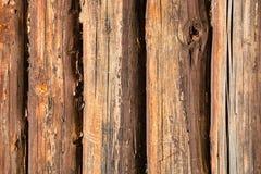 Gamla ekstammar av väggen för landshus Arkivbild