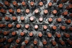 Gamla flaskor av vinrankan Fotografering för Bildbyråer