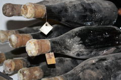 Gamla flaskor av vinrankan Royaltyfria Foton
