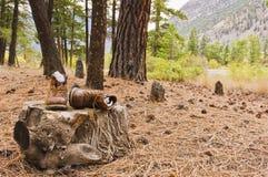 Gamla fotvandra kängor på stubbe Royaltyfri Bild