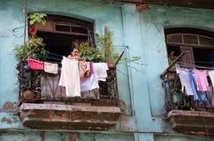 Gamla gator i den Habana viejaen, Kuba arkivfoton