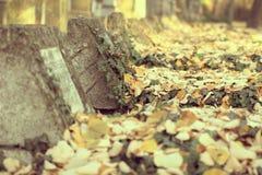 Gamla gravar i en kyrkogård Arkivfoton