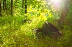 Gamla gummihjul i skogföroreningen av miljön Arkivfoton