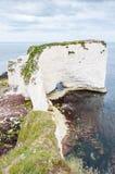 Gamla Harry Rocks, Dorset, Förenade kungariket fotografering för bildbyråer
