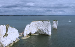 Gamla Harry Rocks Dorset UK Arkivfoton