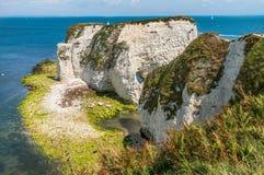 Gamla Harry Rocks i ö av Purbeck i Dorset royaltyfria foton