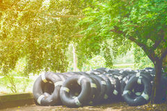 Gamla inre rör som svävar, inre rubber gummihjul Royaltyfri Fotografi