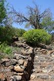 Gamla, Israel. Stairs at the Gamla Nature Reserve, Israel Stock Photo