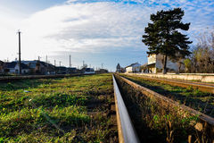 Gamla järnstänger med grönt gräs Arkivfoto
