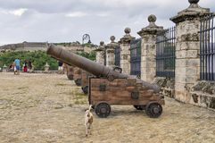 Gamla kanoner i fästningen av La Fuersa royaltyfri fotografi