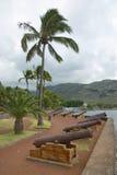 Gamla kanoner på havssidan av Stet Denis De La Möte, huvudstad av den franska utländska regionen och avdelningen av mötet Arkivfoton