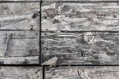 Gamla knöt ruttna spruckna golvtiljor med Rusty Nails och Roun Arkivfoton
