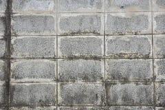 Gamla kvarter för tegelstenvägg med vattenfläckar Arkivbilder
