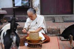 Gamla kvinnor ger mat till hundkapplöpning Arkivbild