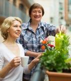 Gamla kvinnor på balkong med kaffe Royaltyfri Foto