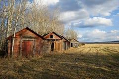 Gamla ladugårdar och skjul Arkivfoton