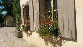 Gamla lantgårdfönster med blommor Royaltyfri Foto