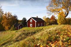 Gamla lantliga landskap- och höstfärger Arkivbild