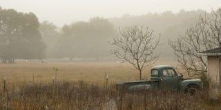 Gamla lastbil och hästar i misten royaltyfri foto