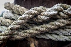 Gamla Marine Ropes Fotografering för Bildbyråer