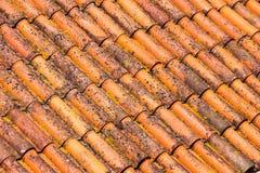 Gamla och smutsiga röda taktegelplattor Arkivbild