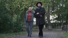 Gamla par beundrar naturen i parkerar stock video