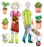 Gamla par för vattenfärg med plantan Arkivfoton