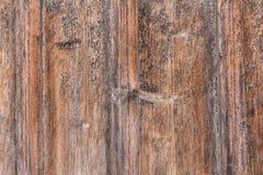 Gamla plankor med en distinkt wood struktur arkivbilder