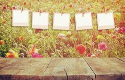 Gamla polaroidfotoramar som framme hänger på ett rep med tappningträbrädetabellen av landskapet för blom för sommarblommafält Arkivbild