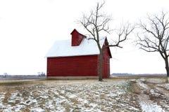 Gamla röda ladugård och träd i vinter i Illinois Arkivbilder