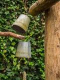 Gamla rostiga hinkar som hänger från pol Royaltyfri Fotografi