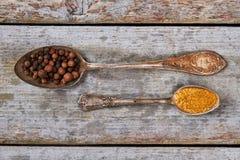 Gamla rostiga skedar med kryddor på en retro bakgrund Arkivfoto