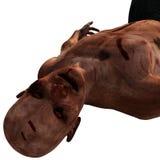 Gamla, skalliga svaga levande död Royaltyfri Foto