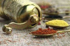 Gamla skedar med kryddor Royaltyfri Fotografi