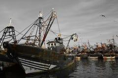Gamla skepp, port av Essaouira, Marocko Arkivbilder