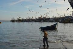 Gamla skepp, port av Essaouira, Marocko Arkivfoton