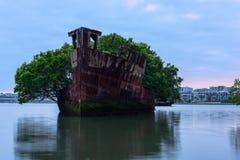 Gamla skeppsbrott av den Homebush fjärden i Sydney Australia Arkivfoto