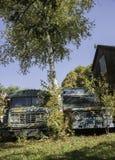 Gamla skolbussar Arkivfoto