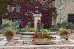 Gamla springbrunn och blommor Fotografering för Bildbyråer