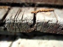Gamla spruckna bräden Fotografering för Bildbyråer