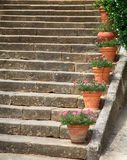 Gamla stenmoment dekorerade vid blomkrukor, Italien Royaltyfria Bilder