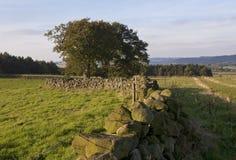 Gamla stenstaket för torr vägg Royaltyfri Fotografi